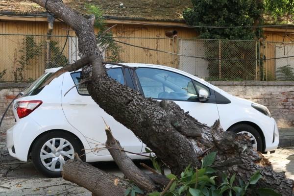 Инцидент в центъра на Пловдив